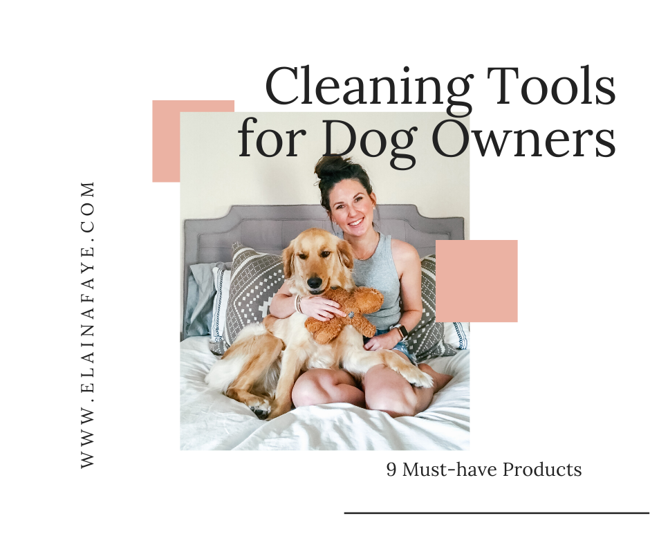 The best cleaning products for dog owners. Pet stain and odor eliminating cleaners. Products that make shedding season easy.